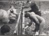 silnowo-ogrodzenie-plac-zabaw2